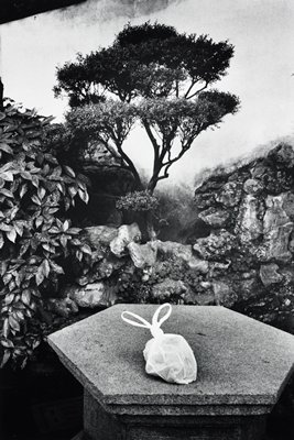 white plastic bag with handles tied to resemble a rabbit on a hexagonal stone; rock wall, foliage and small tree in background