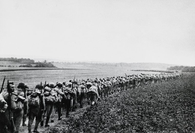 very long line of marching soldiers between two fields; grey sky