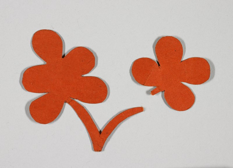 two clovers with stems attached- one with four leaves, one with five leaves; orange paper