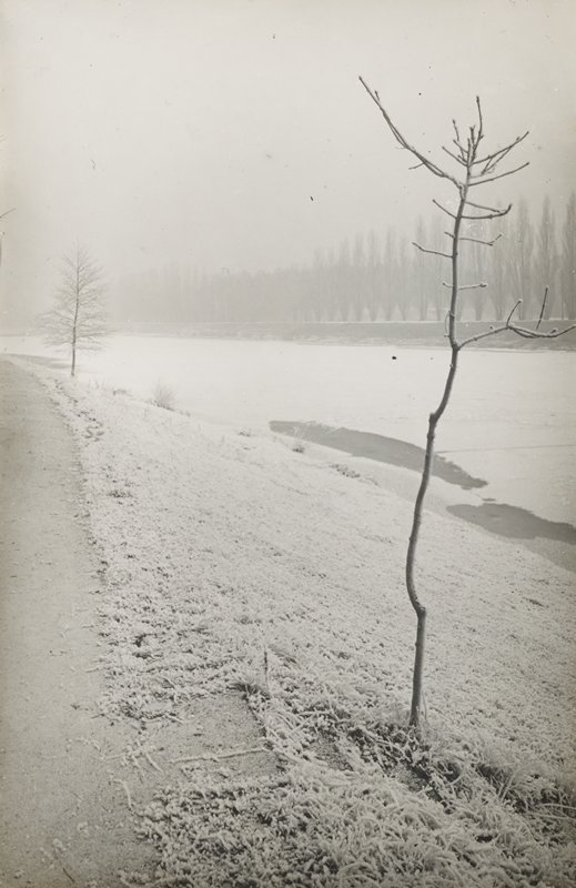 bare tree in right foreground; frozen river in background
