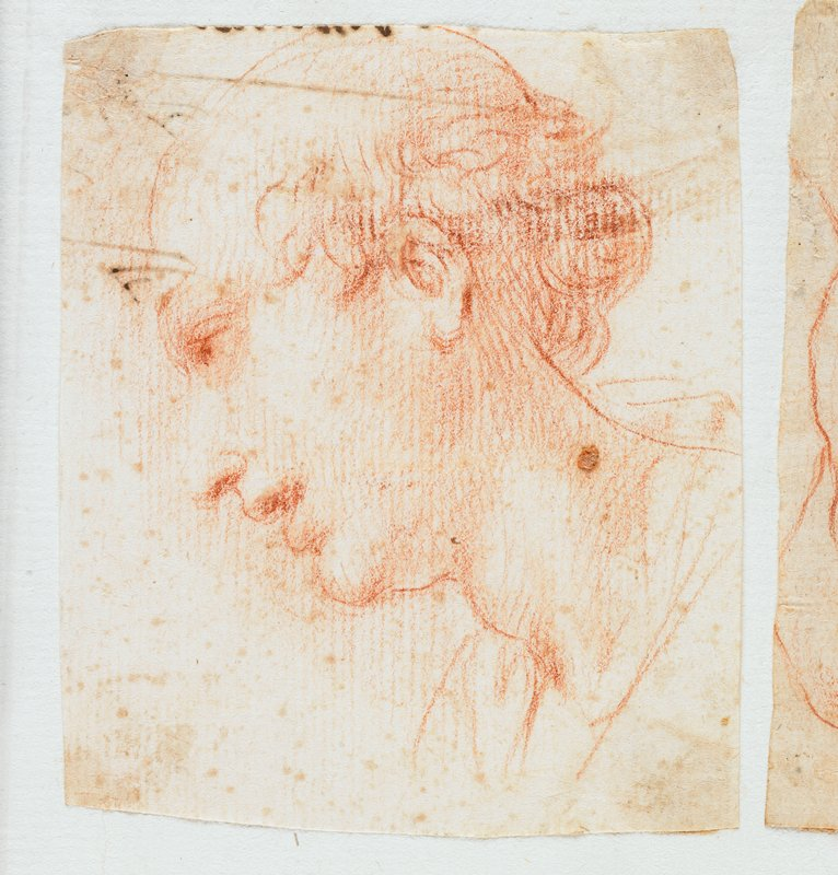 portrait profile from PL of balding man with curly hair and pronounced Adam's apple, in red chalk; labeled on sheet in blue ink: H.82; mounted on sheet with 3 other small drawings--further drawings have been removed; other drawings present are labeled on the sheet in blue ink: H.83, H.84, H.85; see also L2009.52.67b-d