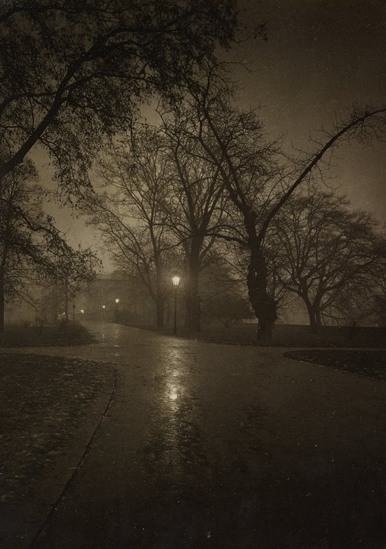 night view of paved path with street lights and silhouettes of trees
