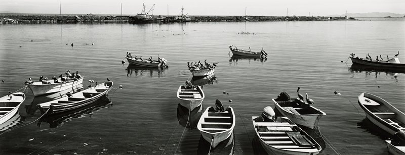 group of small boats with sea birds perched on them; larger boats in background; high horizon line