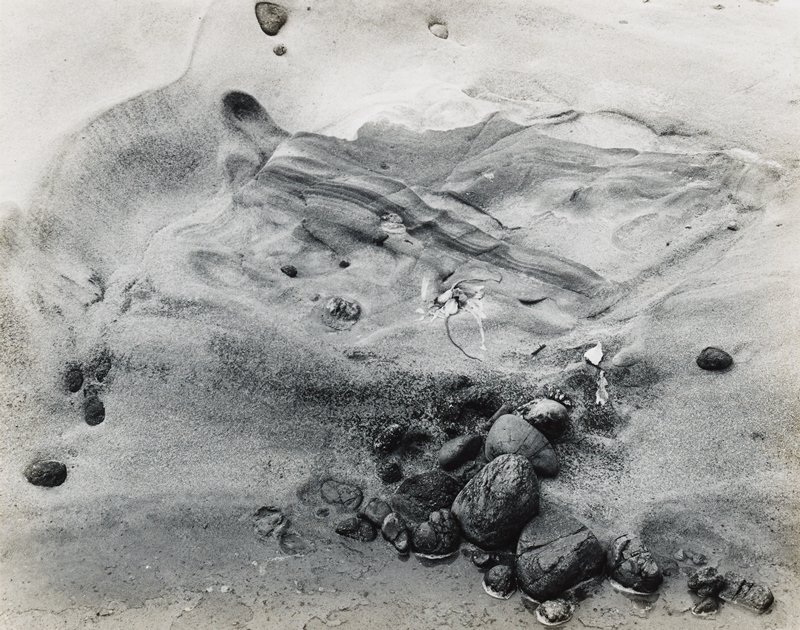 depression in sand with some sea creatures; large rocks in sand