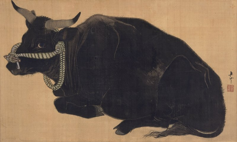 reclining bull with front leg curled under; bit between nose with rope that wraps behind head