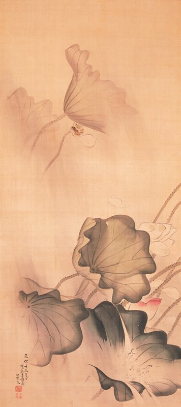 large green and gray lotus leaves at bottom blowing in the wind; closed pink blossom amid foliage; two gray lotus leaves in UL with windblown white blossom losing its petals; sheets of gray rain