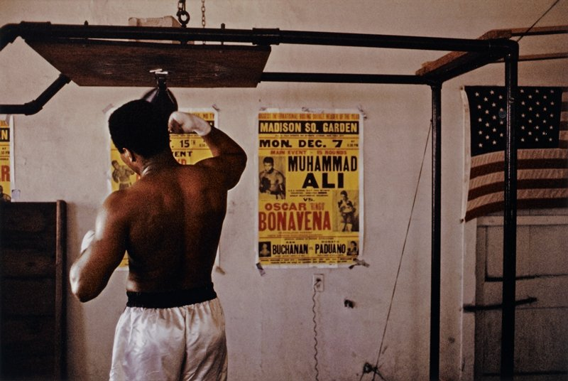 torso and head of black man seen from back, wearing white boxing shorts with black waistband, punching a speed bag; American flag on wall at right; poster for December 7 fight between Muhammad Ali and Oscar Bonavena on wall to right of boxer