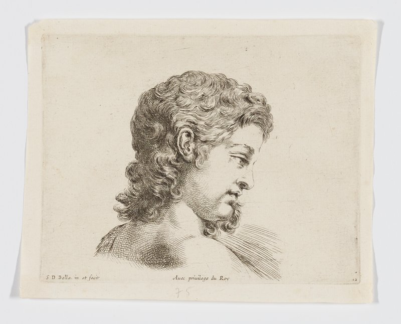 study of head of a youth with shoulder-length curly hair in profile from PR