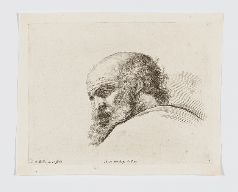 head of an old man with a bushy beard, looking down toward PL, seen in profile from same side