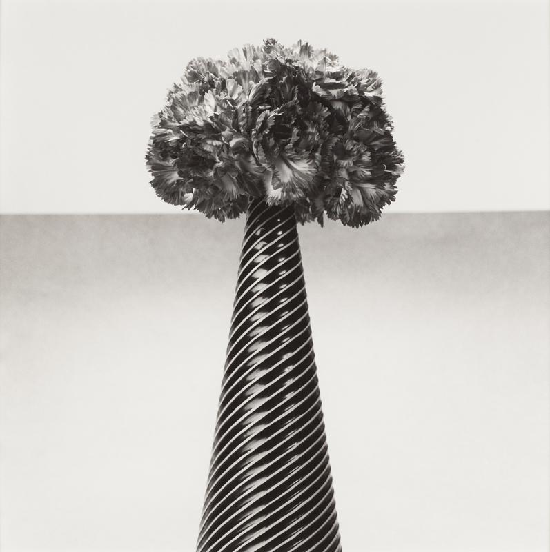 black and white; slender black cone-shaped vase with white diagonal stripe pattern; vase is in center of image and bottom is not visible; grey horizon line with downward gradient across image at same height as top of vase; gathered bunch of flowers (carnations) at top of vase facing many directions; light grey/white band above grey horizon line at top of image