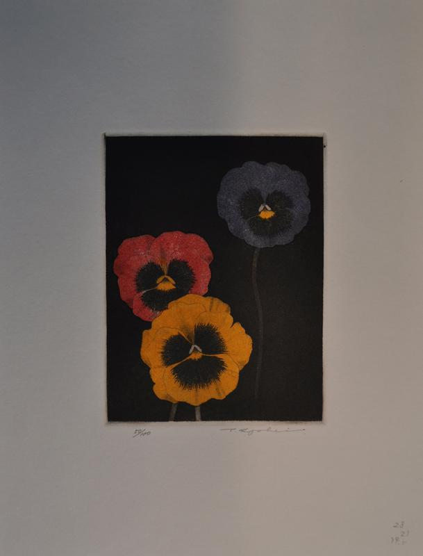 yellow, red, and blue pansies
