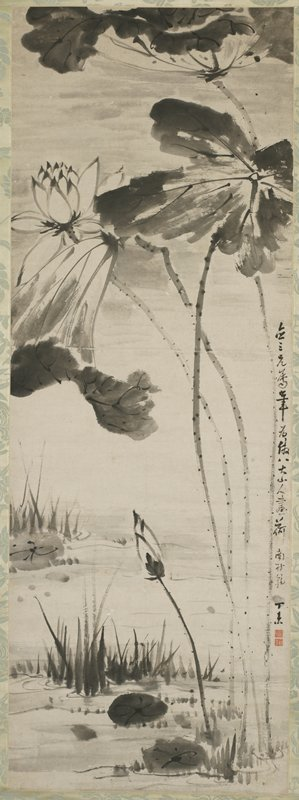 lotus flowers and bud, with long, thin, spotted stems and large leaves growing in water with floating leaves and grass