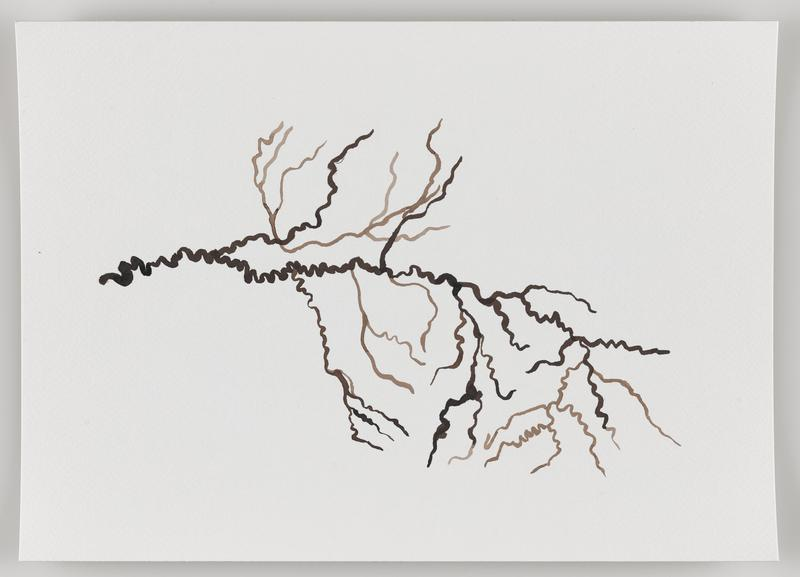 brown zigzagging lines with branches in mainly horizontal format