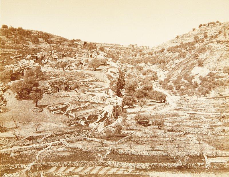 valley, Palestine