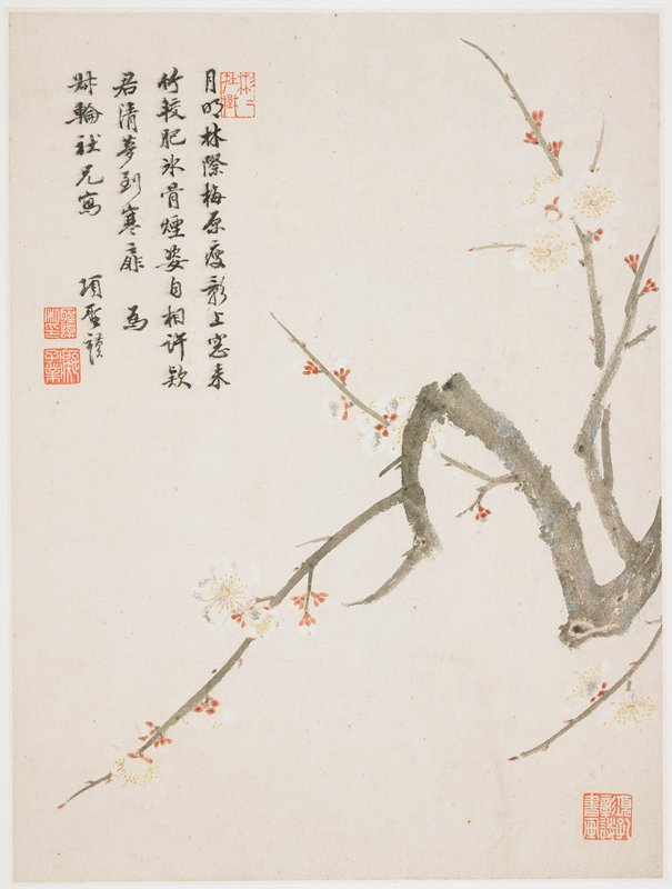white blossoms with yellow spotted centers and red buds on a gnarled grey branch; inscription and 3 seals in ULC, seal in LRC