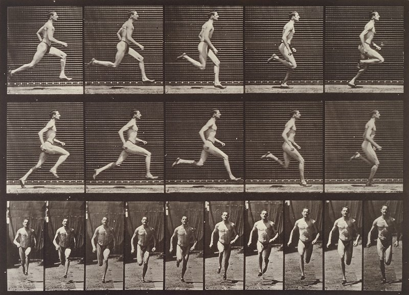Running at a half-mile gait. From a portfolio of 83 collotypes, 1887, by Edweard Muybridge; part of 781 plates published under the auspices of the University of Pennsylvania